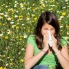Аллергия на пыльцу растений — это поллиноз