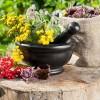 Фитотерапия для лечения гипертонии: рецепты настоев из трав