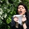 Сильная аллергия на цветение у ребенка и взрослого