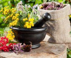 Климакс у женщин: симптомы и лечение травами